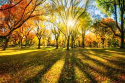 Pierwszy dzień kalendarzowej jesieni.