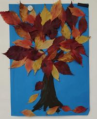 Dzień drzewa w oddziale przedszkolnym